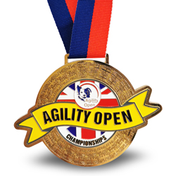 custom ribbon award medal